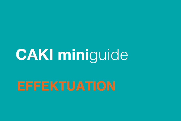 CAKI Miniguide: Effektuation