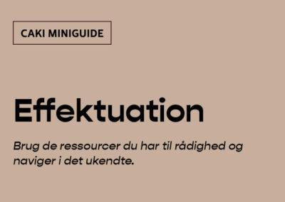 CAKI Miniguide: Effektuation