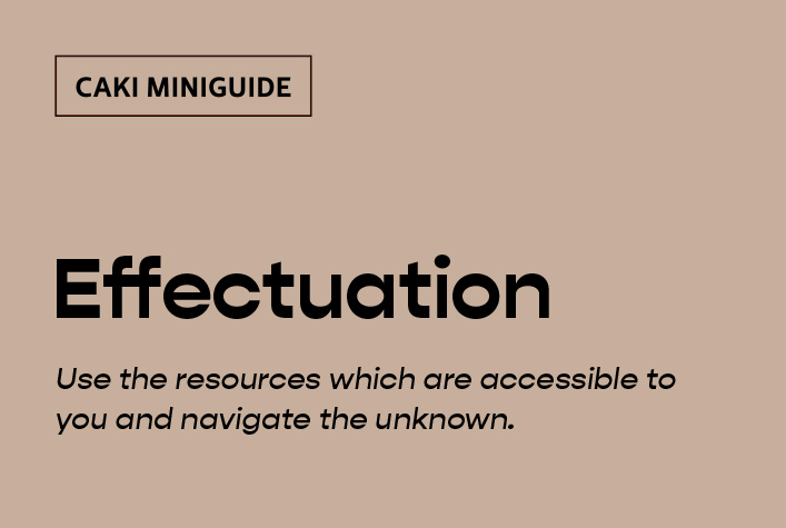 CAKI miniguide to Effectuation